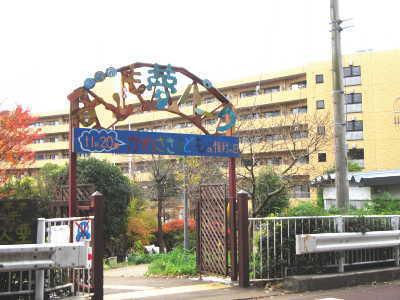 写真。夢パーク入口の新しい門。