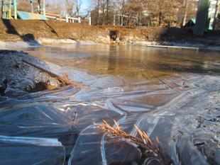 写真。凍った水たまり。