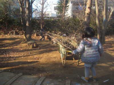 (写真)小さい女の子が一輪車に枝をたくさん入れて運んでいます。